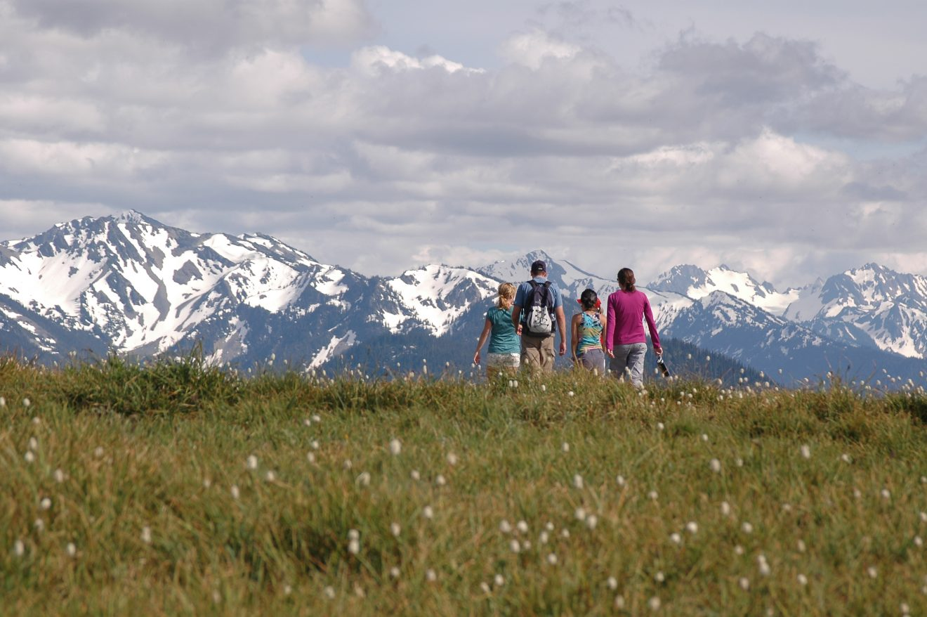 Family Hiking in Mountains in Olympic National Park Hurricane Ridge