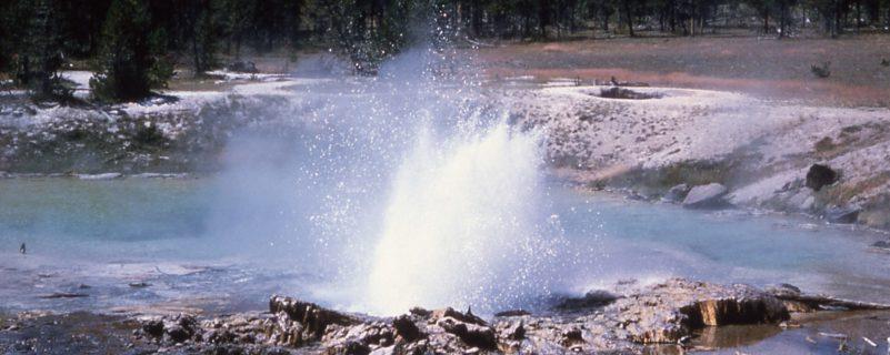 Imperial-Geyser burst