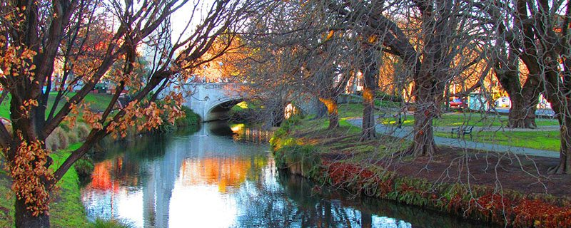 Small river and trees in Christchurch NZ