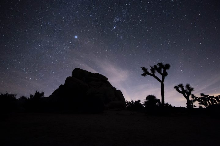 Joshua Tree desert night sky