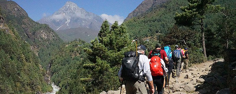hikers walking on lush Nepalese trail