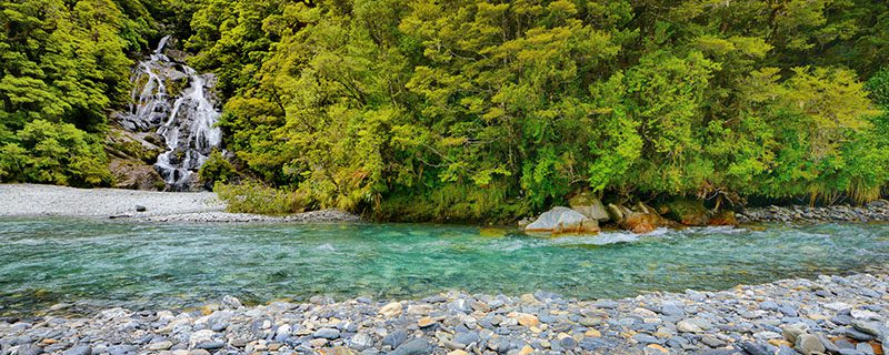 Beautiful river with lush backdrop