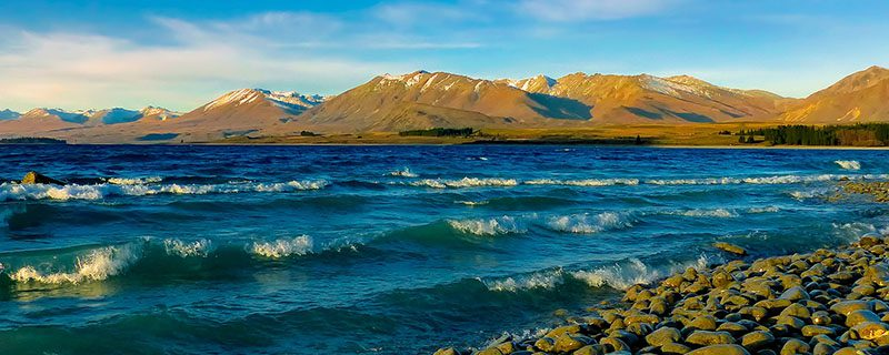 New Zealand shoreline