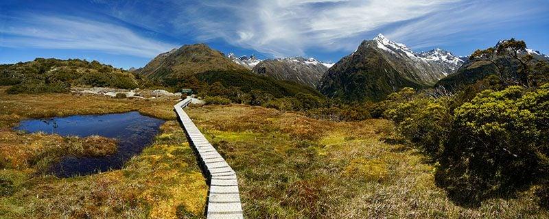 Narrow wooden path through field