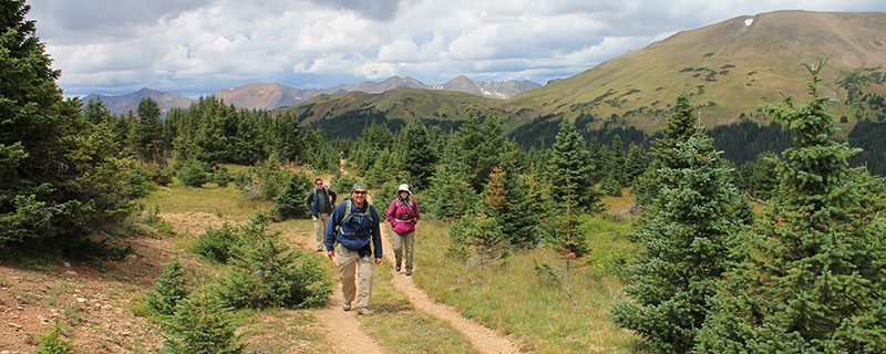 Hikers going to summit