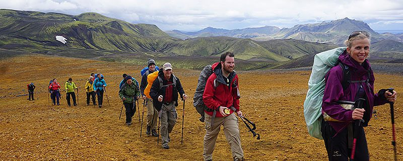 Hikers walking through a yellow-grass field