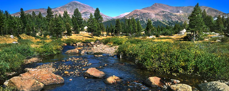 Dark blue stream beside green and yellow meadows