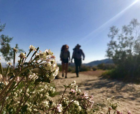 two hikers at Joshua Tree