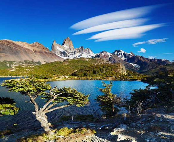 River and greenery in Patagonia