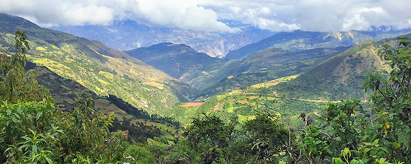 Beautiful green Andes Mountains