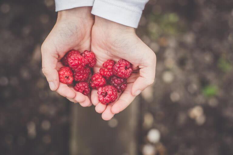 berries as hiking snacks