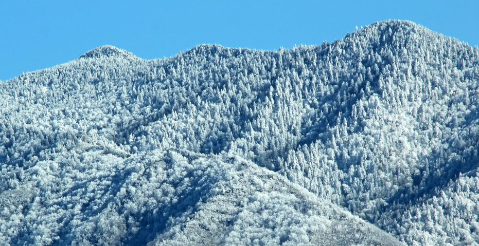 Mount Cammerer, a winter hike without snowshoes in Great Smoky Mountains National Park