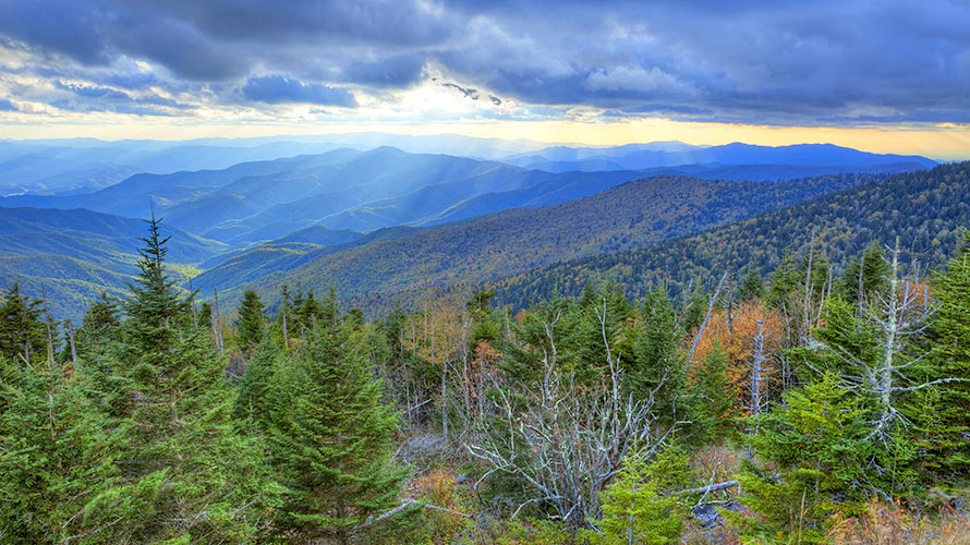 Great Smoky Mountains National Park Hiking Tours
