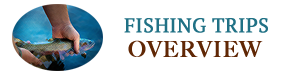 Fly Fishing FAQs