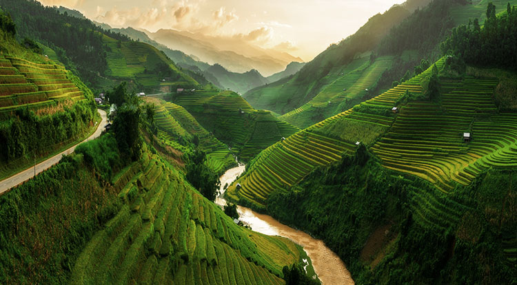 Vietnam Sapa Hiking Tours