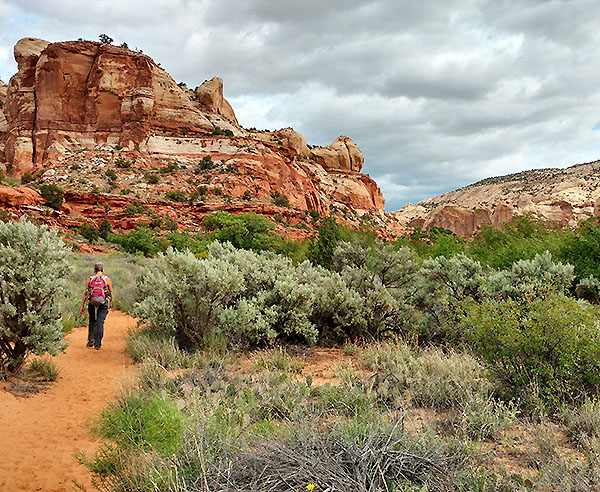 Camping-based Grand Staircase Hiking Tours