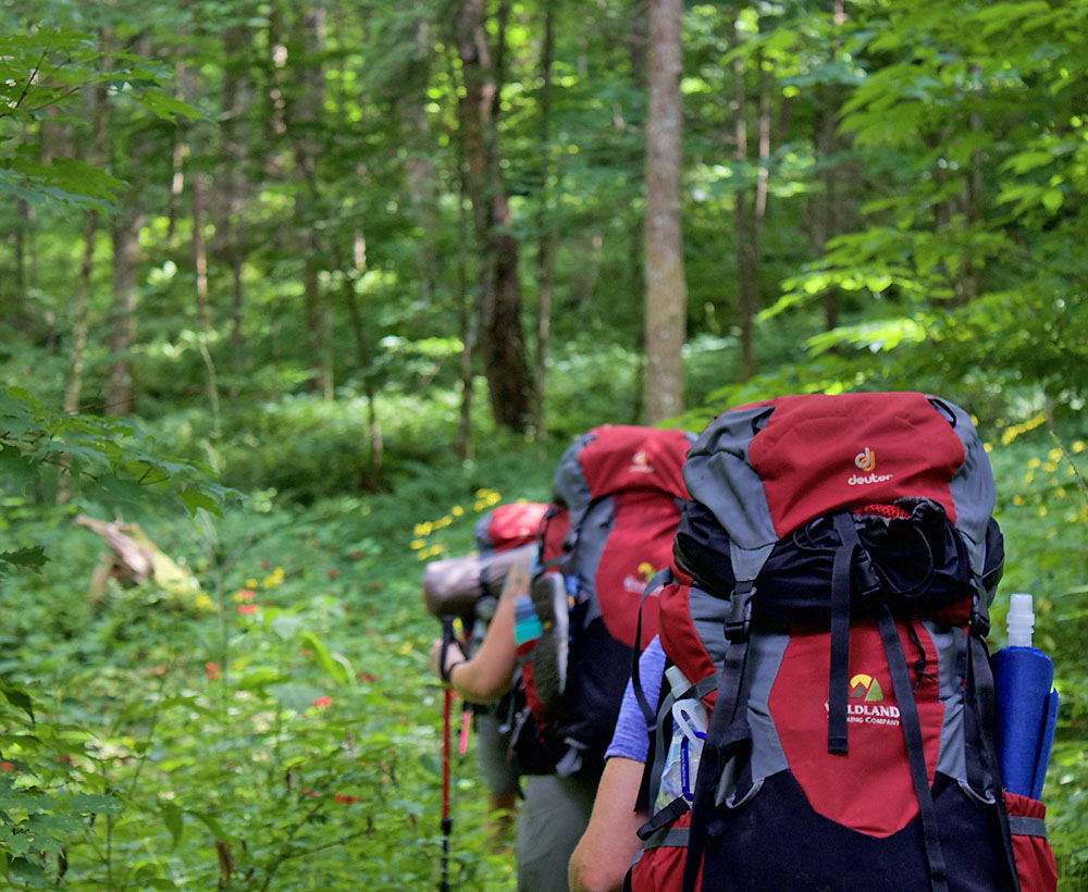 Great Smoky Mountains Backpacking Trips