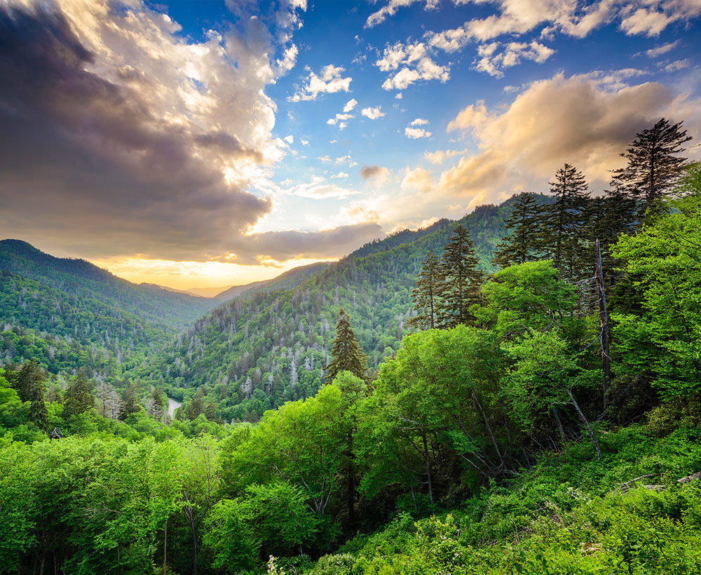 Great Smoky Mountains Day Hikes