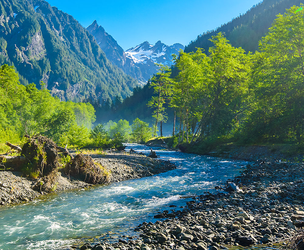 Olympic National Park Backpacking Tours