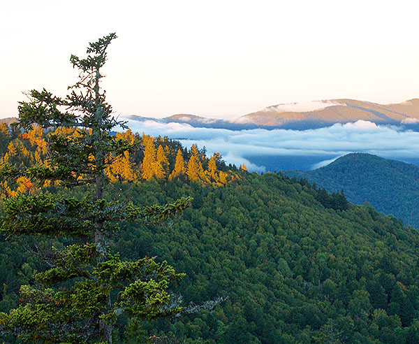 Portered Smokies Hikes