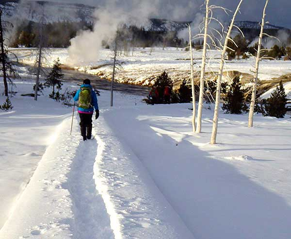 Yellowstone Ski and Snowshoe Tours