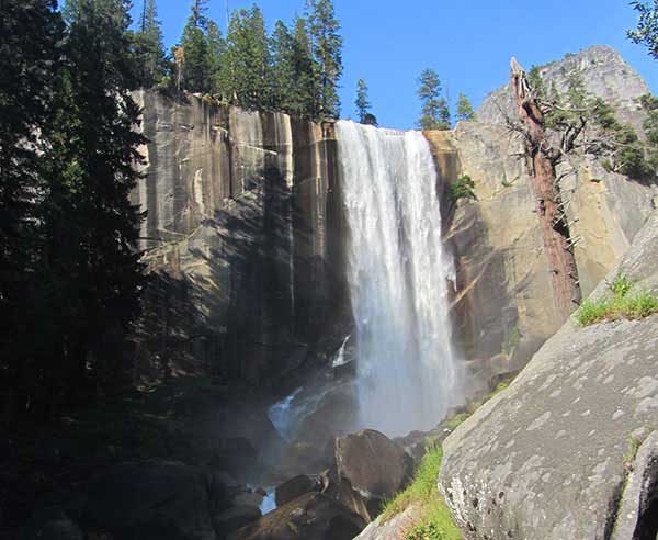 Yosemite Visitor Information