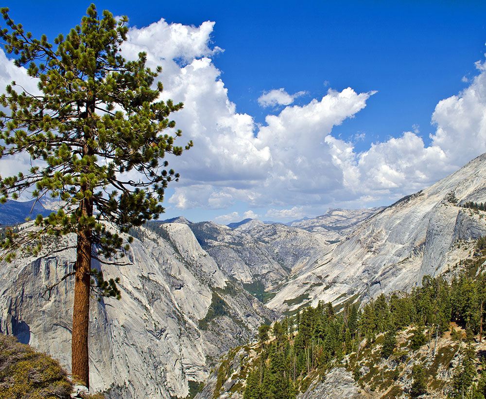 Basecamp Yosemite Hiking Tours
