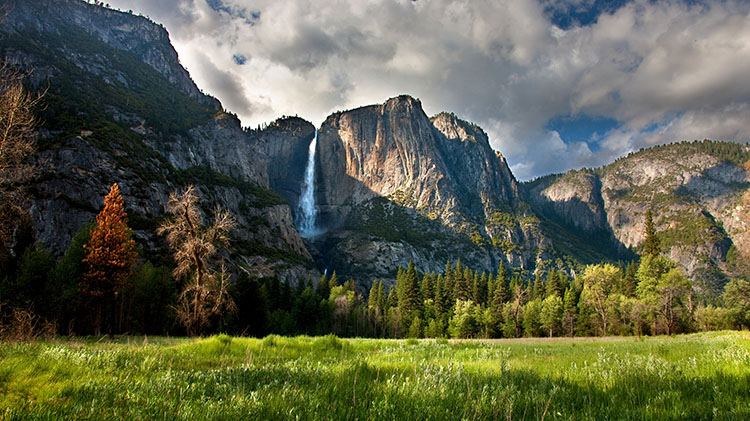 Best of Yosemite Valley Day Tour