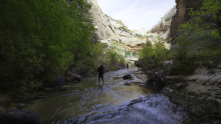Grand Staircase-Canyons of the Escalante Trek