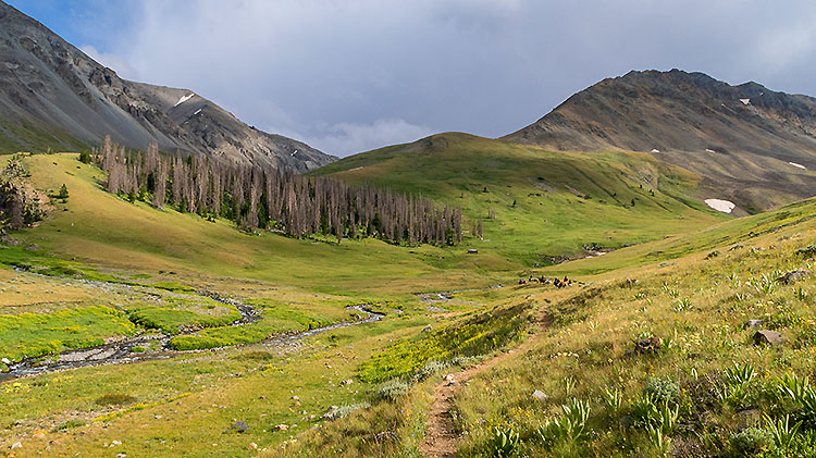 Greybull Pass Thru-Hike