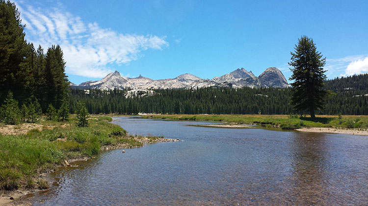 Tuolumne Meadows Backpacking Trip