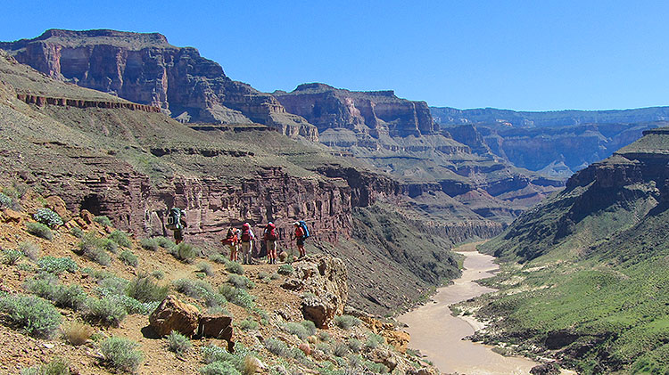Wonders of the Grand Canyon