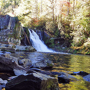 When to Visit the Smokies