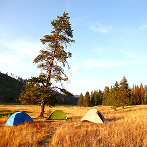 Tents in Yellowstone