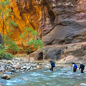 Zion hiking tours